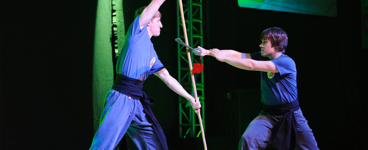 a kung fu demonstration