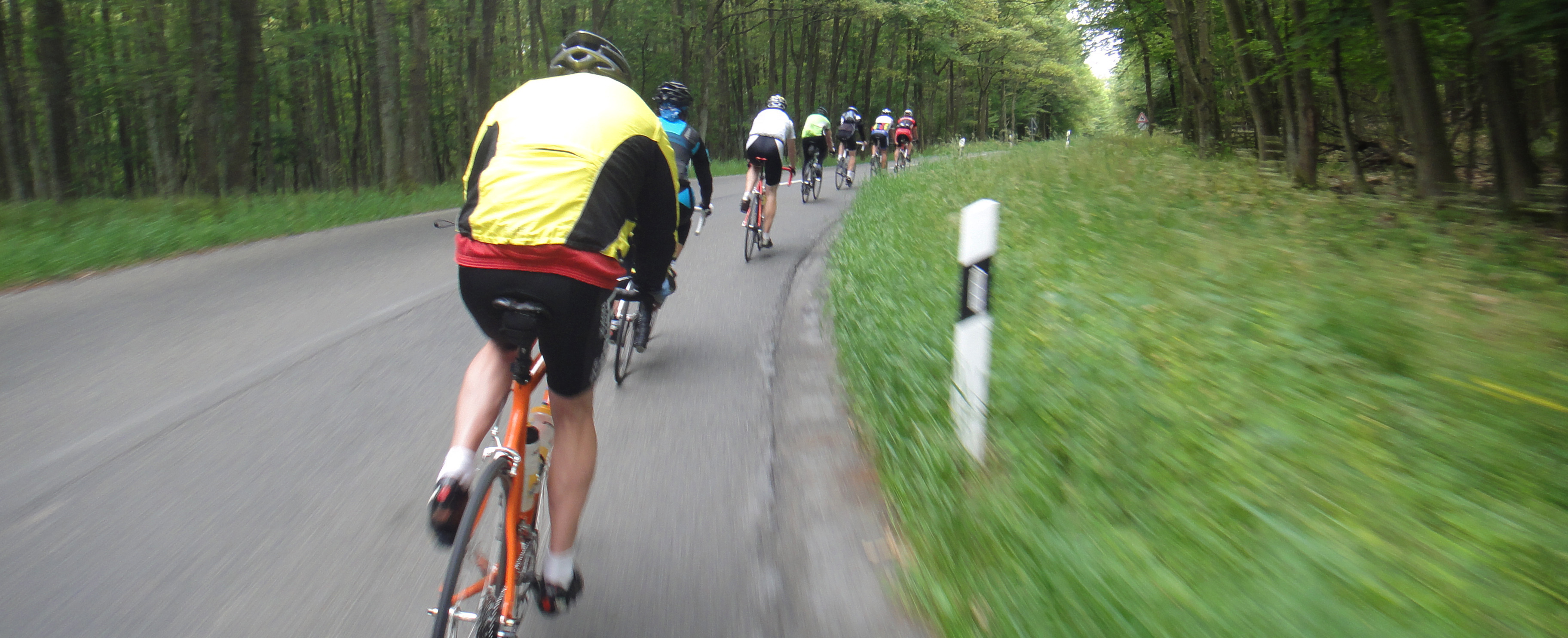 View of cyclists from the back